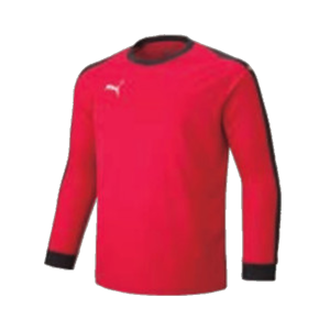 PUMA LIGA GKシャツ 729965