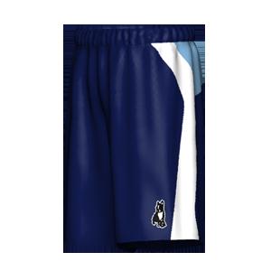 SoccerJunky TP038